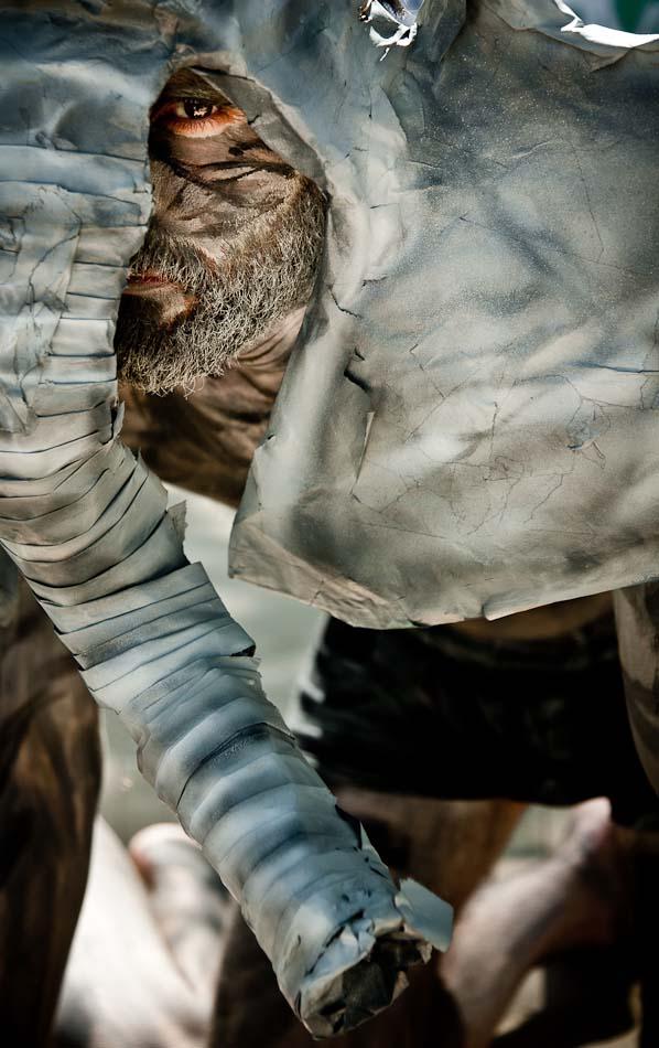 protesta-zoo-animalistas-jesusgpastor-12-elefantes
